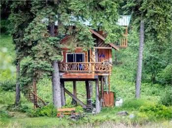 One-Of-A-Kind Treehouse - East Kootenays